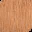 Barva NMT 8.04  60 ml  (New 2018)
